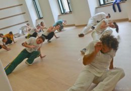 Capoeira Canigó